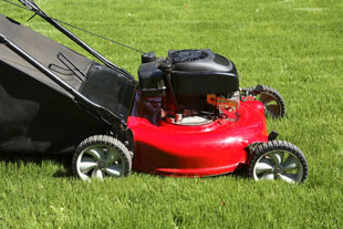 Mower, Strimmer, Brush Cutter, Shredder Hire in Faringdon, Swindon